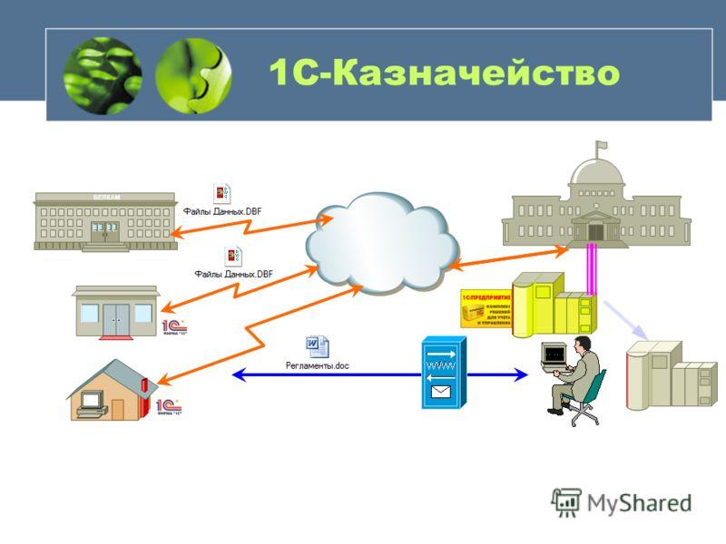 1С-Казначейство БЕЛКАМ