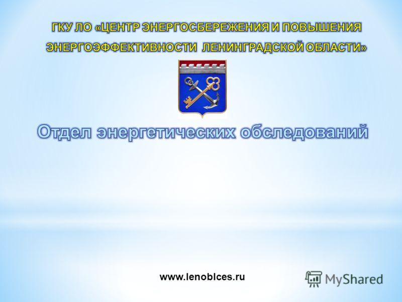 www.lenoblces.ru