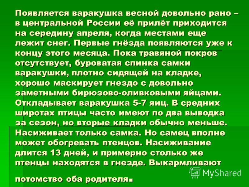Появляется варакушка весной довольно рано – в центральной России её прилёт приходится на середину апреля, когда местами еще лежит снег. Первые гнёзда появляются уже к концу этого месяца. Пока травяной покров отсутствует, буроватая спинка самки вараку