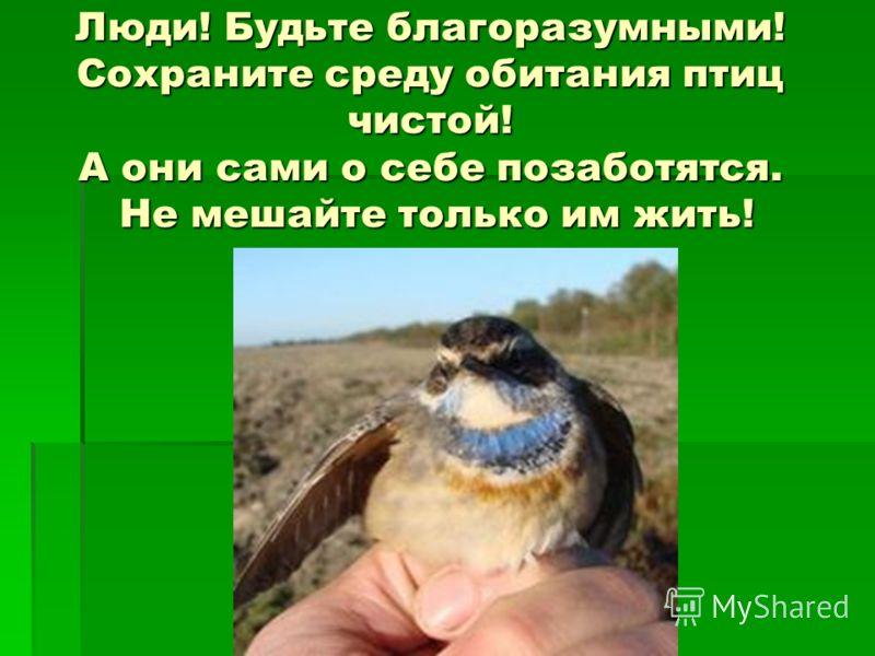 Люди! Будьте благоразумными! Сохраните среду обитания птиц чистой! А они сами о себе позаботятся. Не мешайте только им жить!