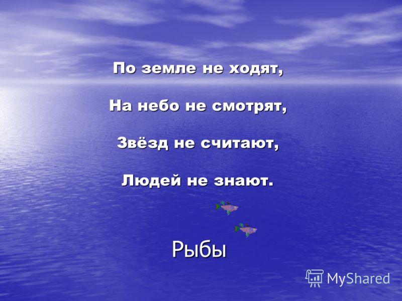 По земле не ходят, На небо не смотрят, Звёзд не считают, Людей не знают. Рыбы
