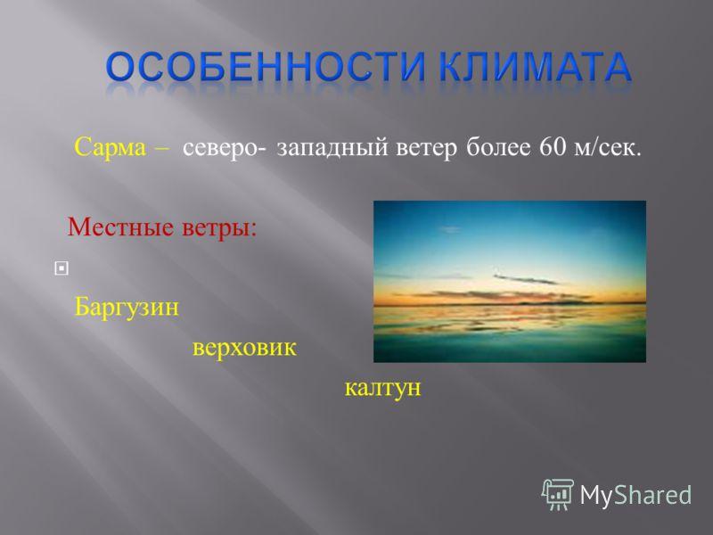 Сарма – северо - западный ветер более 60 м / сек. Местные ветры : Баргузин верховик калтун