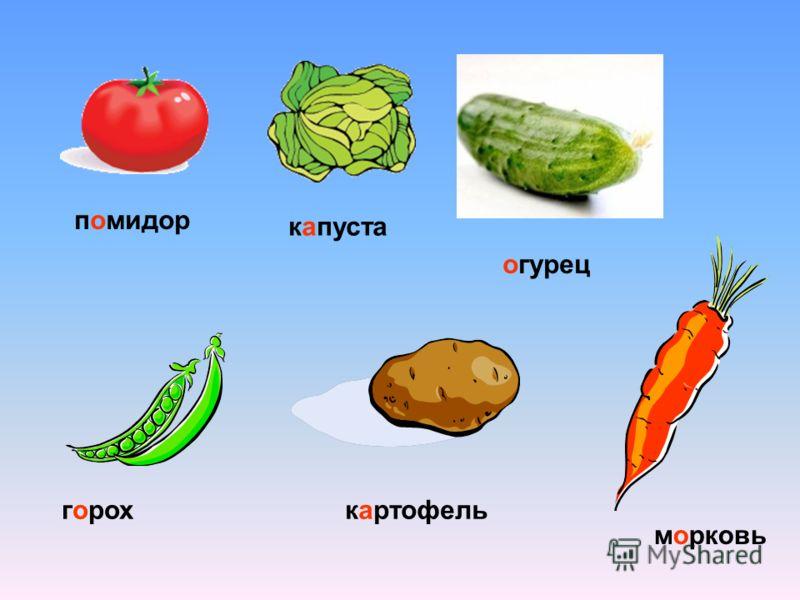 помидор капуста огурец горохкартофель морковь