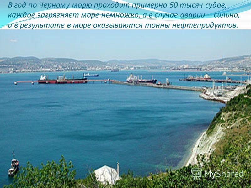 В год по Черному морю проходит примерно 50 тысяч судов, каждое загрязняет море немножко, а в случае аварии – сильно, и в результате в море оказываются тонны нефтепродуктов.