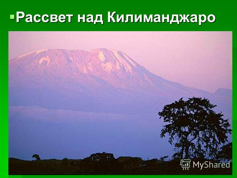 Рассвет над Килиманджаро Рассвет над Килиманджаро