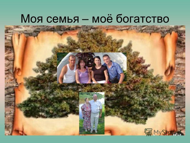 17.09.2012Нечаева В.И. Моя семья – моё богатство