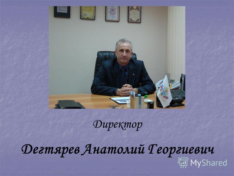 Директор Дегтярев Анатолий Георгиевич