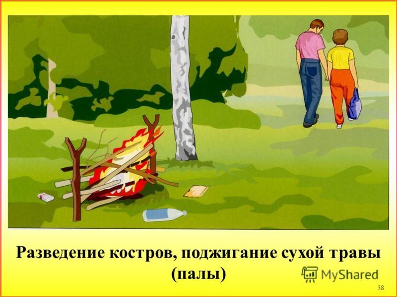 38 Разведение костров, поджигание сухой травы (палы)
