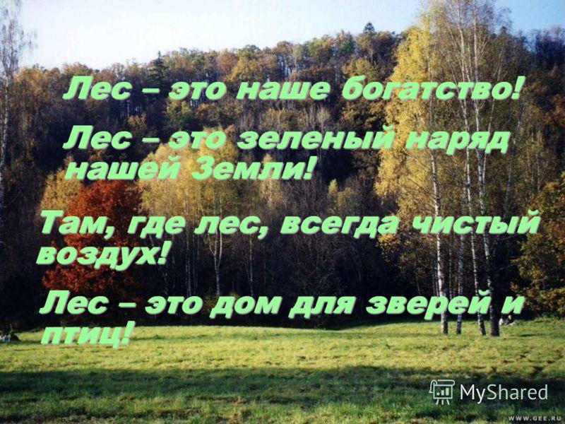 Лес – это наше богатство! Лес – это зеленый наряд нашей Земли! Там, где лес, всегда чистый воздух! Лес – это дом для зверей и птиц!