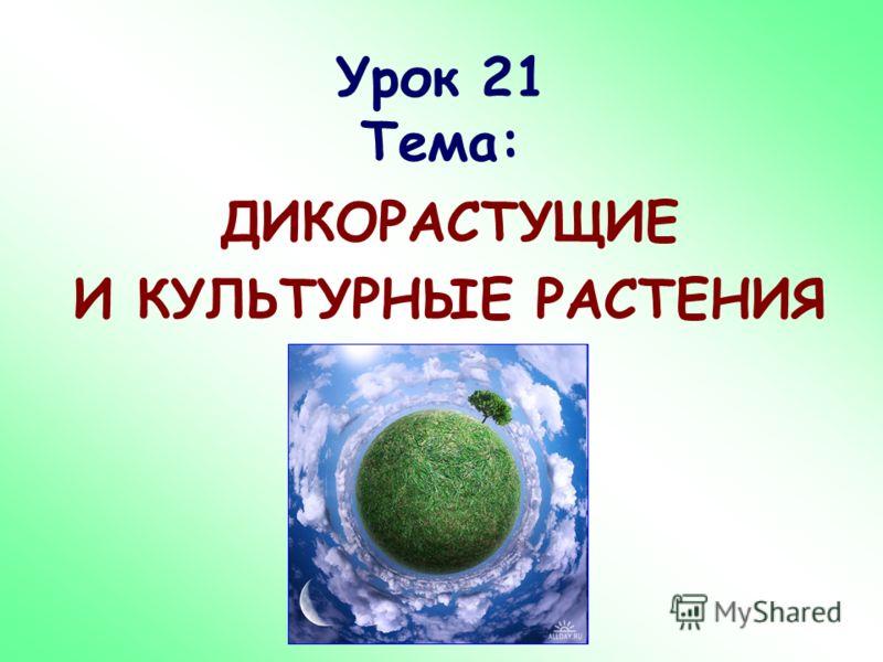 Урок 21 Тема: ДИКОРАСТУЩИЕ И КУЛЬТУРНЫЕ РАСТЕНИЯ