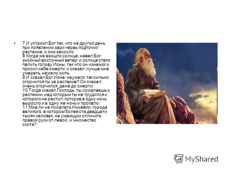 7 И устроил Бог так, что на другой день при появлении зари червь подточил растение, и оно засохло. 8 Когда же взошло солнце, навел Бог знойный восточный ветер, и солнце стало палить голову Ионы, так что он изнемог и просил себе смерти, и сказал: лучш