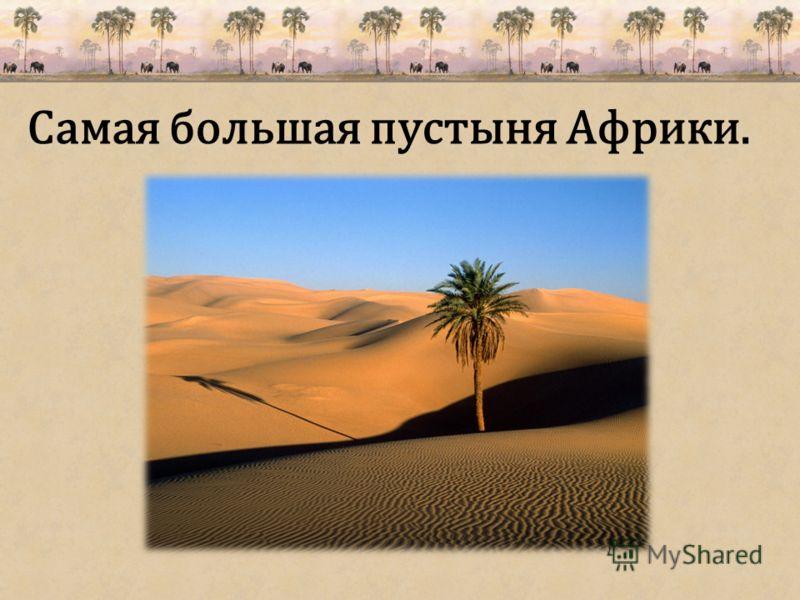 Самая большая пустыня Африки.