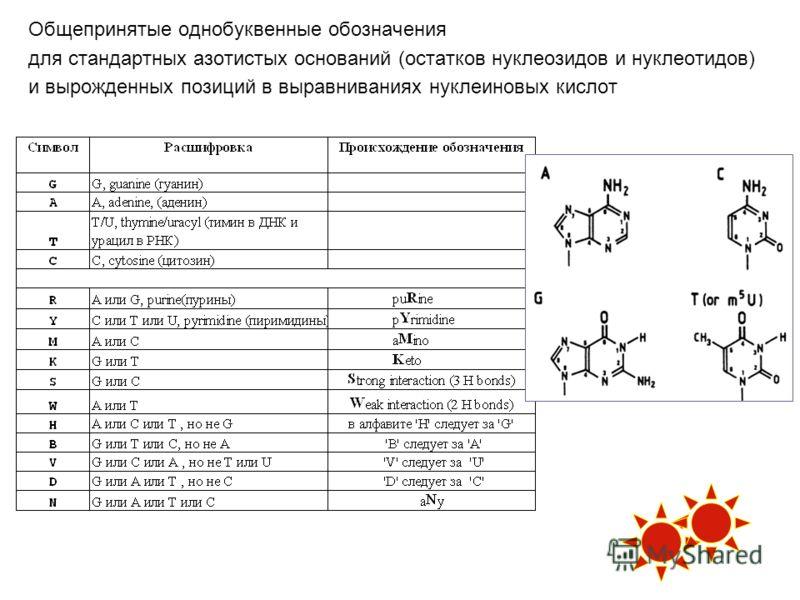 Общепринятые однобуквенные обозначения для стандартных азотистых оснований (остатков нуклеозидов и нуклеотидов) и вырожденных позиций в выравниваниях нуклеиновых кислот