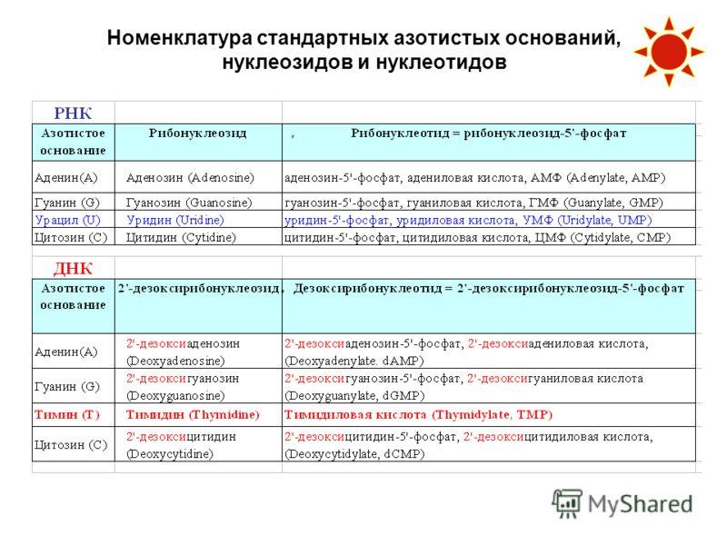 Номенклатура стандартных азотистых оснований, нуклеозидов и нуклеотидов
