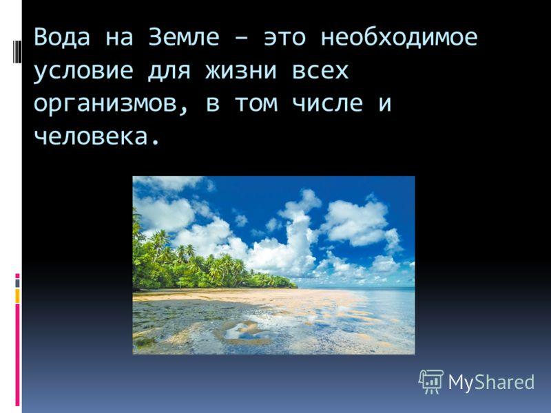 Вода на Земле – это необходимое условие для жизни всех организмов, в том числе и человека.