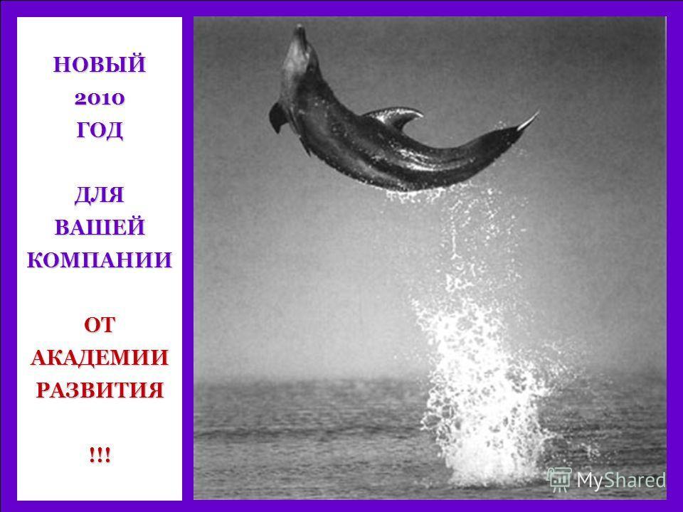 НОВЫЙ2010ГОДДЛЯВАШЕЙКОМПАНИИОТАКАДЕМИИРАЗВИТИЯ!!!