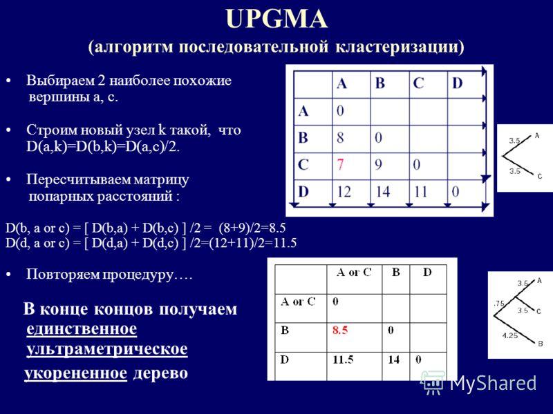 UPGMA (алгоритм последовательной кластеризации) Выбираем 2 наиболее похожие вершины a, c. Строим новый узел k такой, что D(a,k)=D(b,k)=D(a,c)/2. Пересчитываем матрицу попарных расстояний : D(b, a or c) = [ D(b,a) + D(b,c) ] /2 = (8+9)/2=8.5 D(d, a or