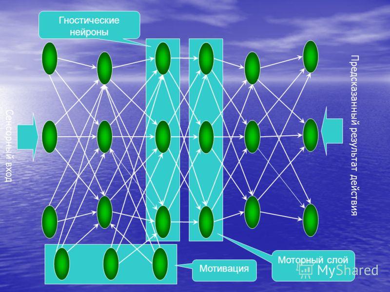 Сенсорный вход Предсказанный результат действия Моторный слой Мотивация Гностические нейроны