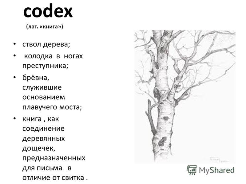 codex codex (лат. «книга») ствол дерева; колодка в ногах преступника; брёвна, служившие основанием плавучего моста; книга, как соединение деревянных дощечек, предназначенных для письма в отличие от свитка.