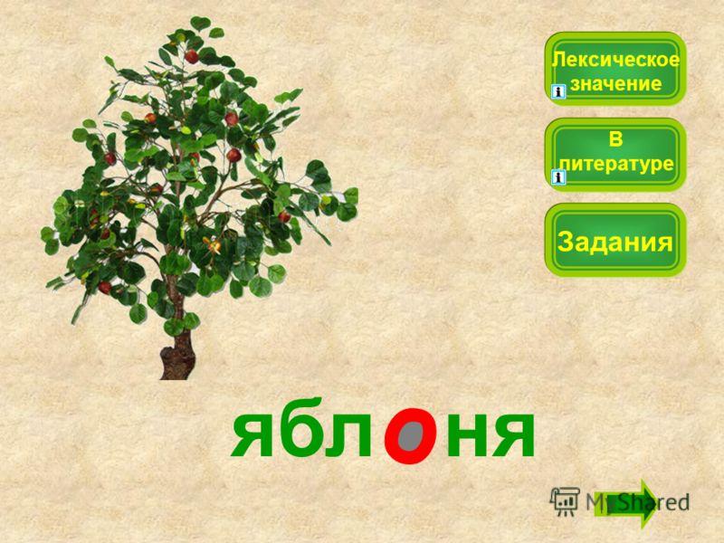 ябл ня Лексическое значение Задания В литературе