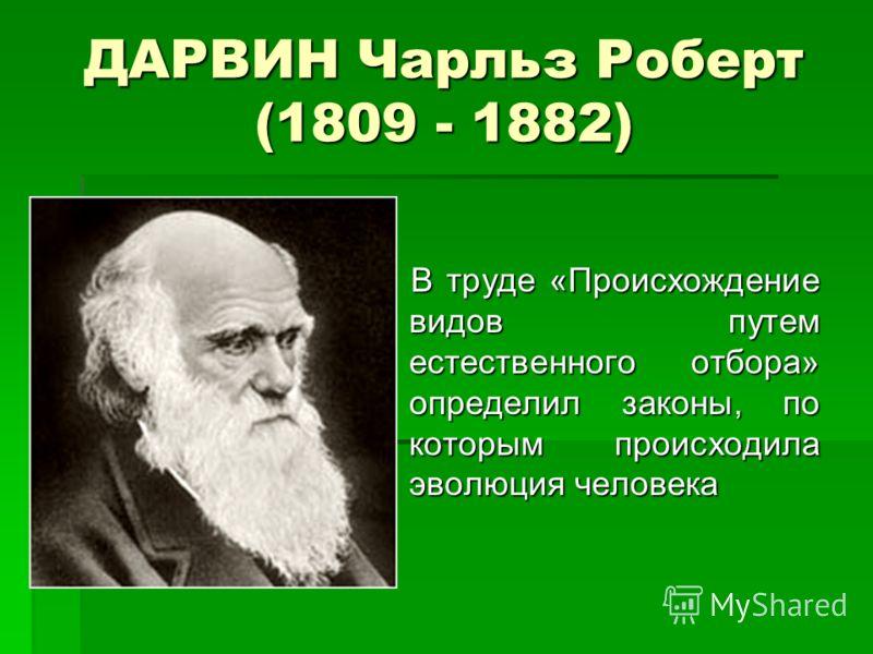 ДАРВИН Чарльз Роберт (1809 - 1882) В труде «Происхождение видов путем естественного отбора» определил законы, по которым происходила эволюция человека