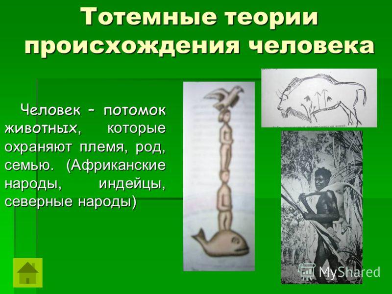 Тотемные теории происхождения человека Человек – потомок животных, которые охраняют племя, род, семью. (Африканские народы, индейцы, северные народы) Человек – потомок животных, которые охраняют племя, род, семью. (Африканские народы, индейцы, северн