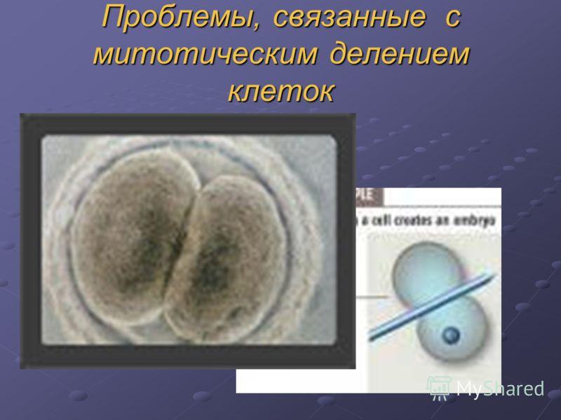 Проблемы, связанные с митотическим делением клеток