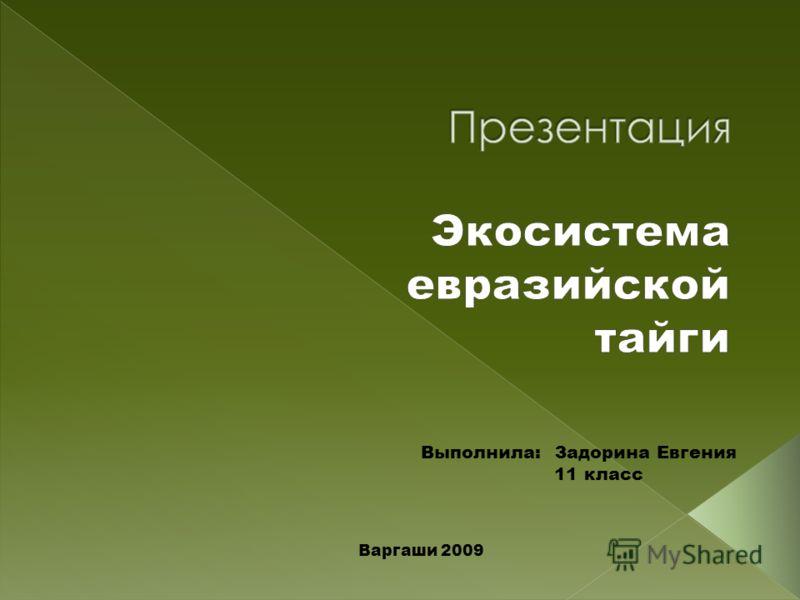 Выполнила: Задорина Евгения 11 класс Варгаши 2009