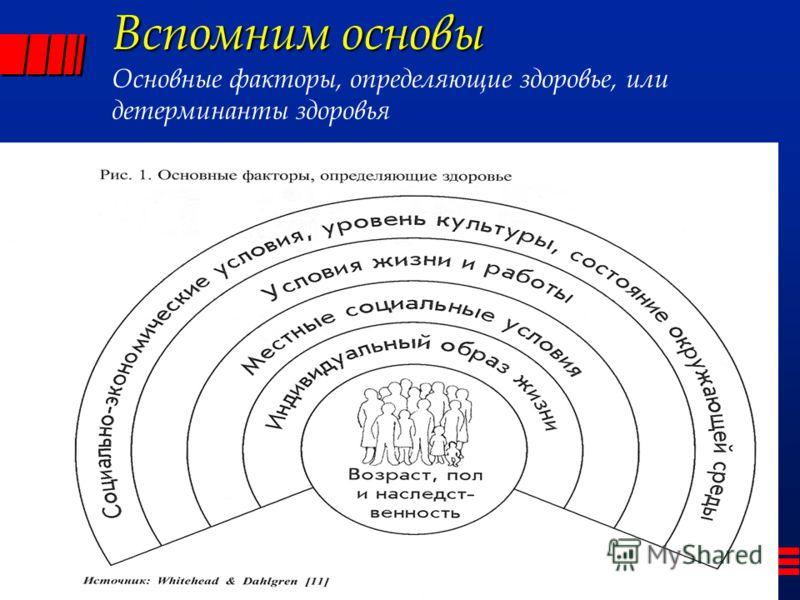 Вспомним основы Вспомним основы Основные факторы, определяющие здоровье, или детерминанты здоровья