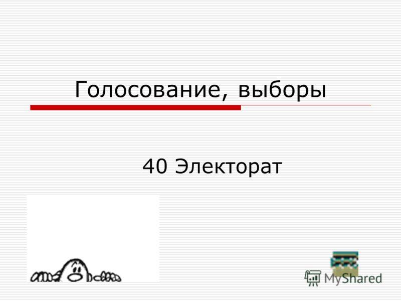 40 Электорат