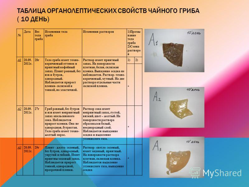 ТАБЛИЦА ОРГАНОЛЕПТИЧЕСКИХ СВОЙСТВ ЧАЙНОГО ГРИБА ( 10 ДЕНЬ) ДатаВес тела гриба Изменения тела гриба Изменения растворов1)Промы вание тела гриба 2)Смена растворо в А120.09. 2011г. 28гТело гриба имеет темно- коричневый оттенок и приятный кофейный запах.