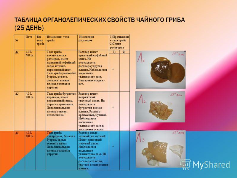 ТАБЛИЦА ОРГАНОЛЕПИЧЕСКИХ СВОЙСТВ ЧАЙНОГО ГРИБА (25 ДЕНЬ) ДатаВес тела гриба Изменения тела гриба Изменения растворов 1)Промывани е тела гриба 2)Смена растворов А14.10. 2011г. Тело гриба увеличилось в размерах, имеет приятный кофейный запах и темно- к