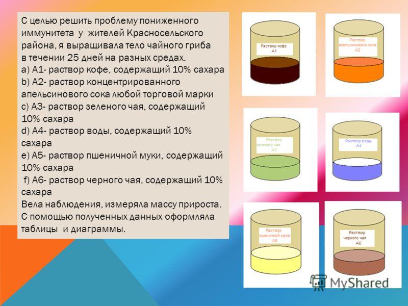 С целью решить проблему пониженного иммунитета у жителей Красносельского района, я выращивала тело чайного гриба в течении 25 дней на разных средах. a) А1- раствор кофе, содержащий 10% сахара b) А2- раствор концентрированного апельсинового сока любой