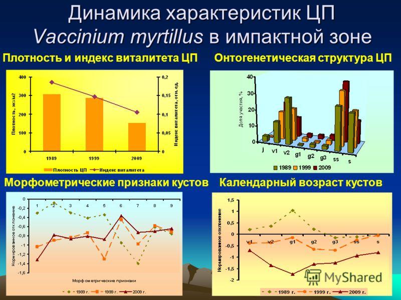 Динамика характеристик ЦП Vaccinium myrtillus в импактной зоне Плотность и индекс виталитета ЦПОнтогенетическая структура ЦП Календарный возраст кустовМорфометрические признаки кустов