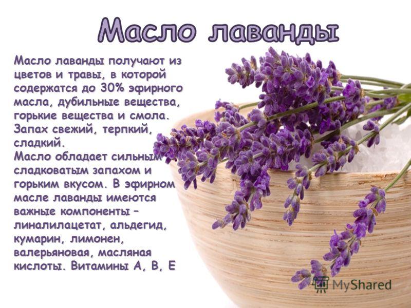 Масло лаванды получают из цветов и травы, в которой содержатся до 30% эфирного масла, дубильные вещества, горькие вещества и смола. Запах свежий, терпкий, сладкий. Масло обладает сильным сладковатым запахом и горьким вкусом. В эфирном масле лаванды и