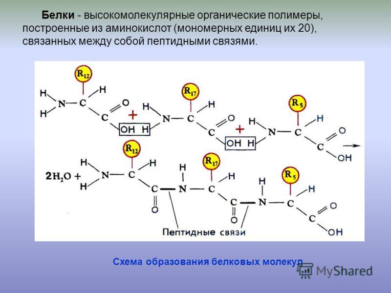 схема образования группы крови