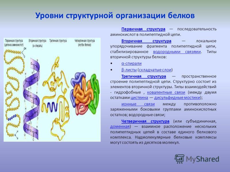 Уровни структурной организации белков Первичная структураПервичная структура последовательность аминокислот в полипептидной цепи. Вторичная структураВторичная структура локальное упорядочивание фрагмента полипептидной цепи, стабилизированное водородн