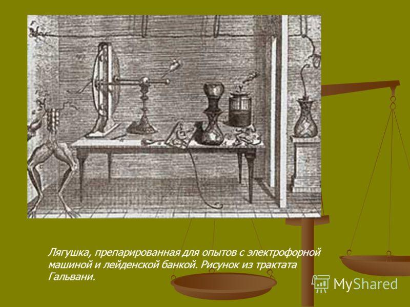 Лягушка, препарированная для опытов с электрофорной машиной и лейденской банкой. Рисунок из трактата Гальвани.