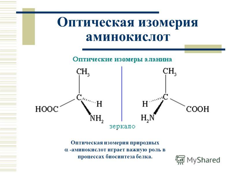 Оптическая изомерия аминокислот Оптическая изомерия природных -аминокислот играет важную роль в процессах биосинтеза белка.
