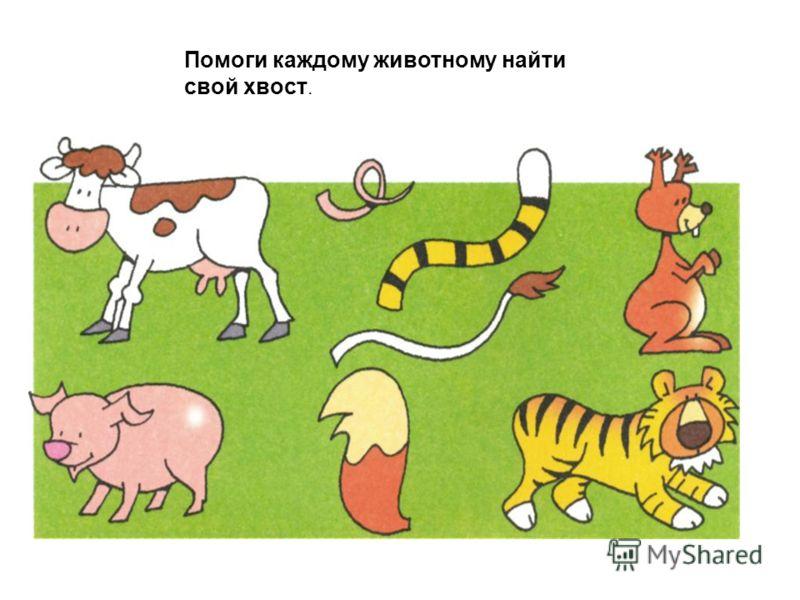 Помоги каждому животному найти свой хвост.