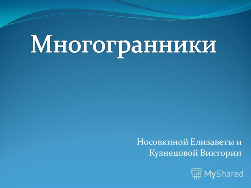 Носовкиной Елизаветы и Кузнецовой Виктории