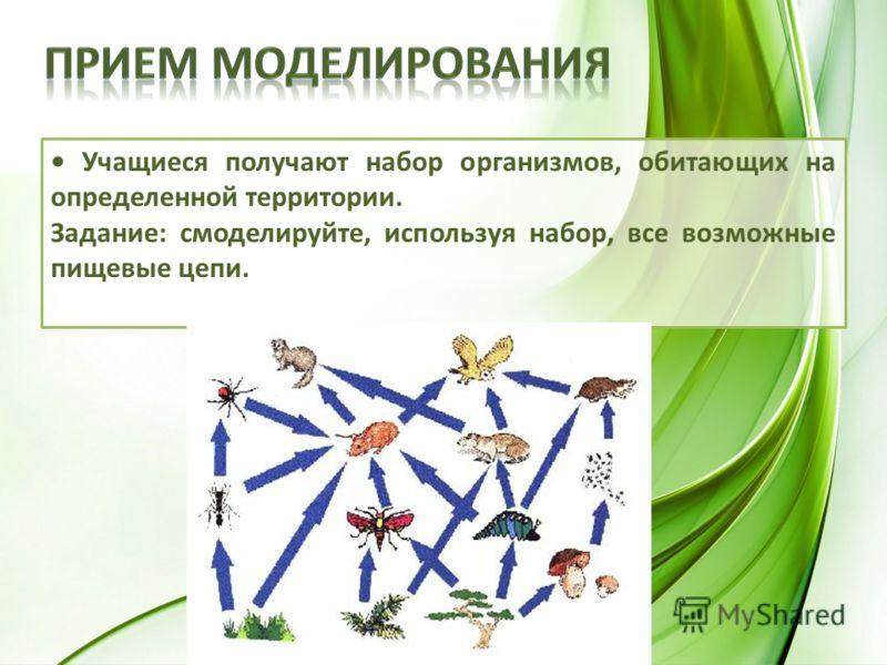 Учащиеся получают набор организмов, обитающих на определенной территории. Задание: смоделируйте, используя набор, все возможные пищевые цепи.