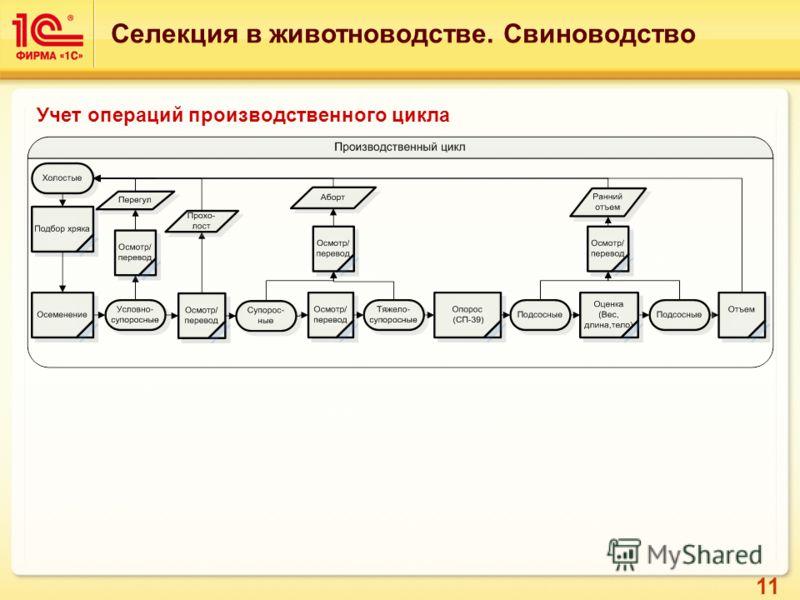 11 Учет операций производственного цикла Селекция в животноводстве. Свиноводство