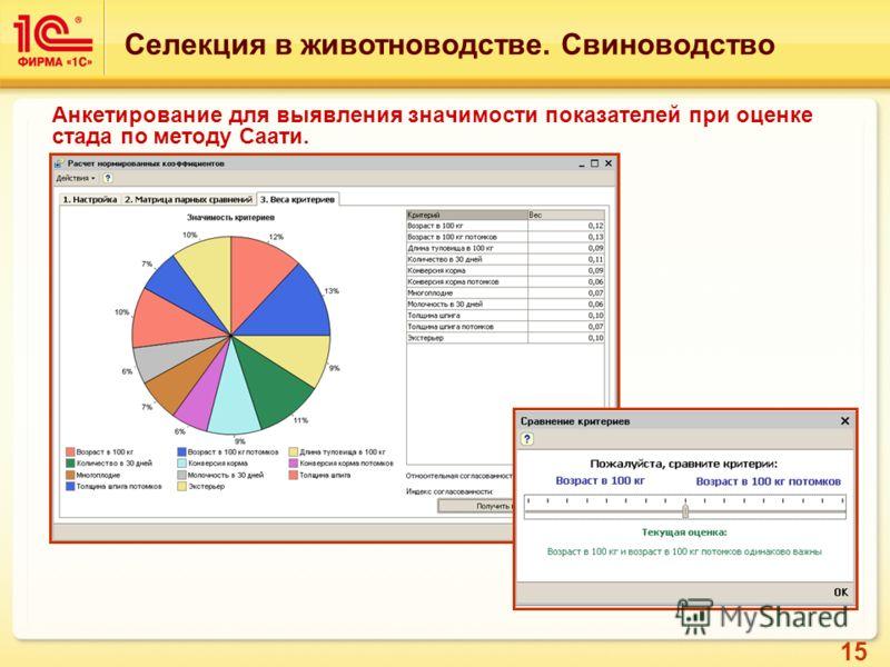15 Анкетирование для выявления значимости показателей при оценке стада по методу Саати. Селекция в животноводстве. Свиноводство