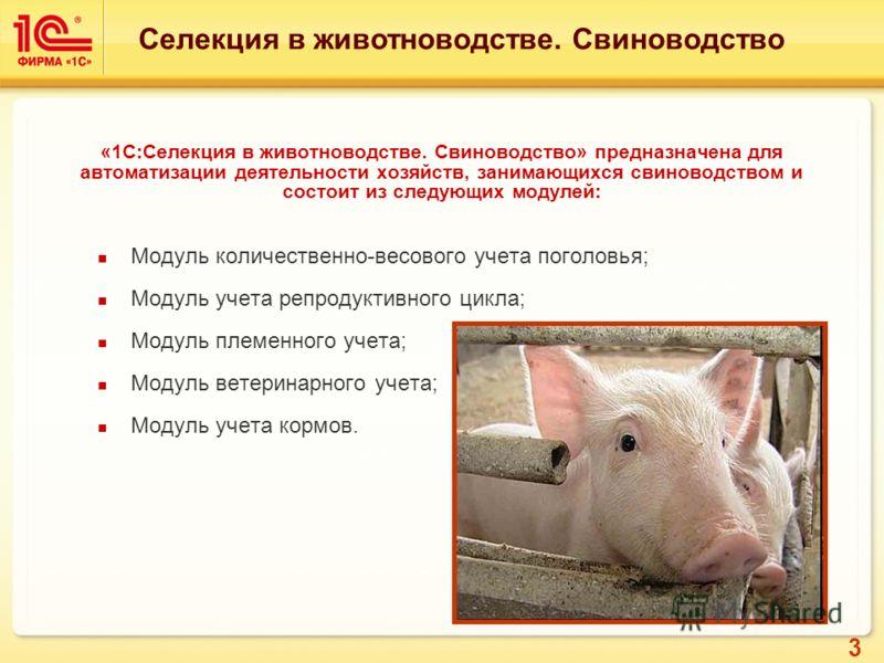 3 «1С:Селекция в животноводстве. Свиноводство» предназначена для автоматизации деятельности хозяйств, занимающихся свиноводством и состоит из следующих модулей: Модуль количественно-весового учета поголовья; Модуль учета репродуктивного цикла; Модуль