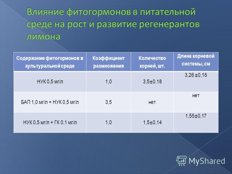 Содержание фитогормонов в культуральной среде Коэффициент размножения Количество корней, шт. Длина корневой системы, см НУК 0,5 мг/л1,03,5±0,18 3,26 ±0,16 БАП 1,0 мг/л + НУК 0,5 мг/л3,5нет НУК 0,5 мг/л + ГК 0,1 мг/л1,01,5±0,14 1,55±0,17
