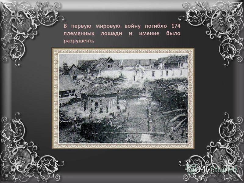В первую мировую войну погибло 174 племенных лошади и имение было разрушено.