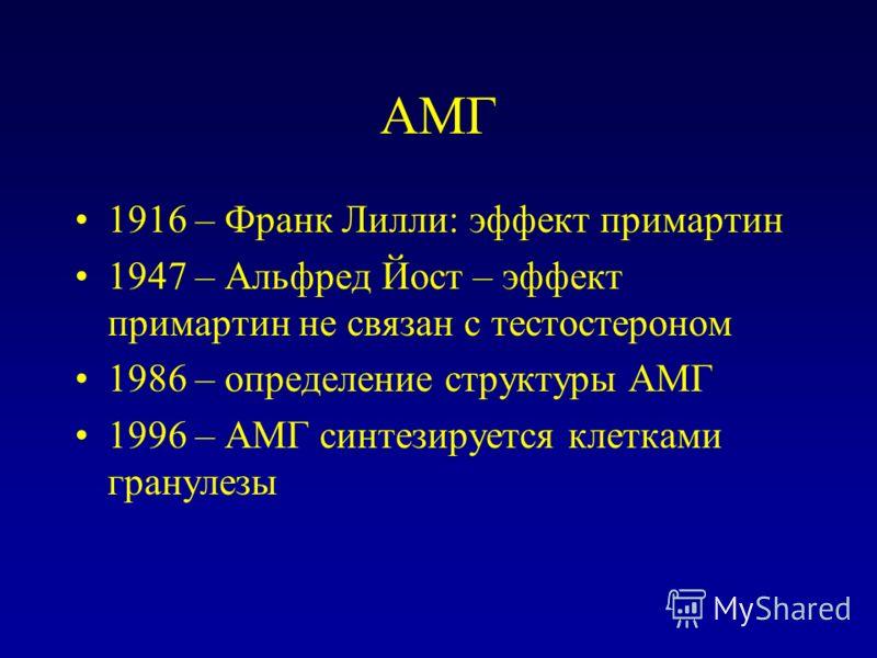 АМГ 1916 – Франк Лилли: эффект примартин 1947 – Альфред Йост – эффект примартин не связан с тестостероном 1986 – определение структуры АМГ 1996 – АМГ синтезируется клетками гранулезы