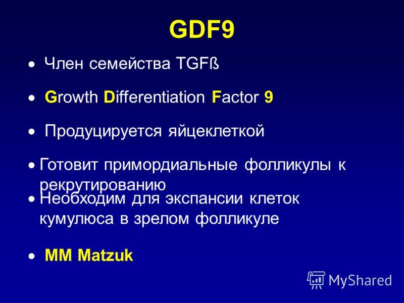 GDF9 Член семейства TGFß Growth Differentiation Factor 9 Продуцируется яйцеклеткой Готовит примордиальные фолликулы к рекрутированию Необходим для экспансии клеток кумулюса в зрелом фолликуле MM Matzuk