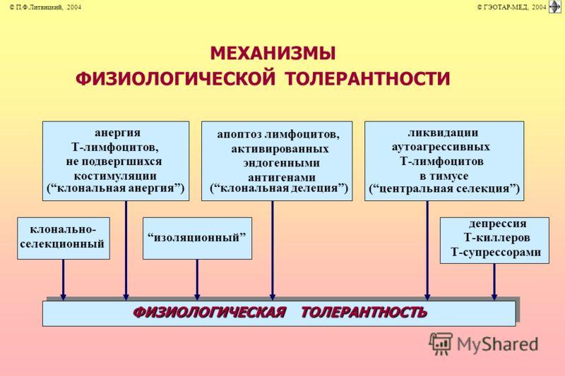 МЕХАНИЗМЫ ФИЗИОЛОГИЧЕСКОЙ ТОЛЕРАНТНОСТИ клонально- селекционный анергия Т-лимфоцитов, не подвергшихся костимуляции (клональная анергия) изоляционный апоптоз лимфоцитов, активированных эндогенными антигенами (клональная делеция) ликвидации аутоагресси